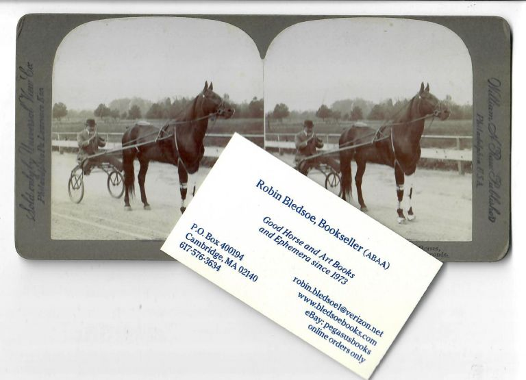 Prince Alert, a King among Light Harness Horses [1903 stereo card]. William H. Rau, stereo card publisher.